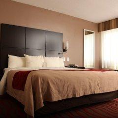 Отель Comfort Inn Los Angeles near Hollywood США, Лос-Анджелес - отзывы, цены и фото номеров - забронировать отель Comfort Inn Los Angeles near Hollywood онлайн комната для гостей
