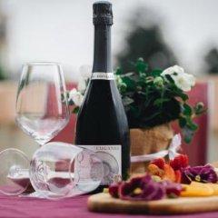 Отель Villa Lussana Италия, Региональный парк Colli Euganei - отзывы, цены и фото номеров - забронировать отель Villa Lussana онлайн фото 2