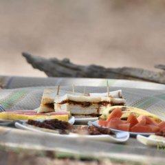 Отель Mahoora Tented Safari Camp - Kumana Шри-Ланка, Яла - отзывы, цены и фото номеров - забронировать отель Mahoora Tented Safari Camp - Kumana онлайн в номере