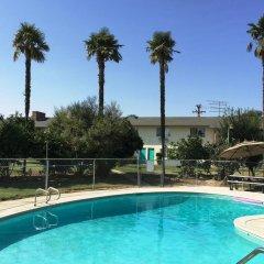 Отель 99 Palms Inn & Suites бассейн
