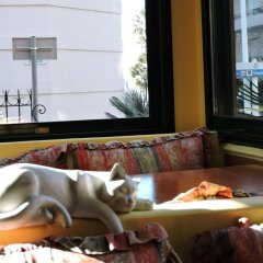 Отель Regina спа фото 2