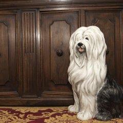 Hotel Pensione Guerrato с домашними животными