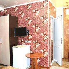Гостиница Gostevoy dom Devid удобства в номере