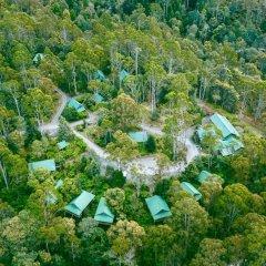 Отель Lemonthyme Wilderness Retreat фото 17