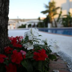 Отель Assinos Palace Джардини Наксос помещение для мероприятий