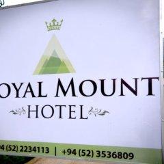 New Royal Mount Hotel с домашними животными