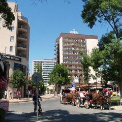 Отель Orel - Все включено Болгария, Солнечный берег - отзывы, цены и фото номеров - забронировать отель Orel - Все включено онлайн городской автобус