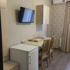 Гостиница Palm Resort удобства в номере фото 2