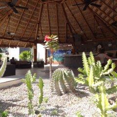 Отель Park Royal Homestay Los Cabos. Мексика, Сан-Хосе-дель-Кабо - отзывы, цены и фото номеров - забронировать отель Park Royal Homestay Los Cabos. онлайн фото 6