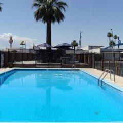 Отель Desert Hills Motel США, Лас-Вегас - отзывы, цены и фото номеров - забронировать отель Desert Hills Motel онлайн бассейн фото 2