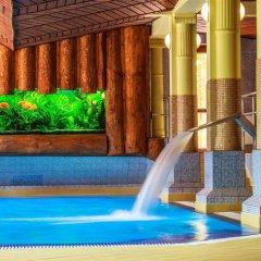 Отель Litwor Польша, Закопане - отзывы, цены и фото номеров - забронировать отель Litwor онлайн бассейн фото 3