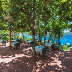 Sardunya Hotel Каш гостиничный бар