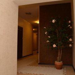 Гостиница Премьера Украина, Хуст - отзывы, цены и фото номеров - забронировать гостиницу Премьера онлайн интерьер отеля фото 3