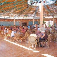 Отель Golden 5 Paradise Resort Египет, Хургада - отзывы, цены и фото номеров - забронировать отель Golden 5 Paradise Resort онлайн помещение для мероприятий