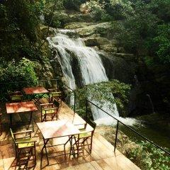 Отель Ella Jungle Resort Шри-Ланка, Бандаравела - отзывы, цены и фото номеров - забронировать отель Ella Jungle Resort онлайн помещение для мероприятий фото 2