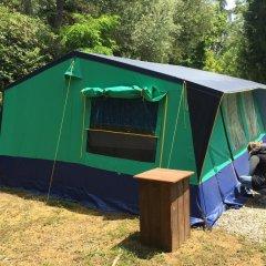 Отель Camping Boschetto Di Piemma Италия, Сан-Джиминьяно - отзывы, цены и фото номеров - забронировать отель Camping Boschetto Di Piemma онлайн фото 15