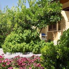 Hotel Ozlem Garden - All Inclusive фото 18