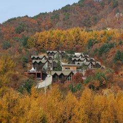 Отель Chalet Resort Южная Корея, Пхёнчан - отзывы, цены и фото номеров - забронировать отель Chalet Resort онлайн приотельная территория