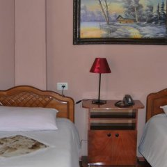 Отель Alpin Hotel Tirana Албания, Тирана - отзывы, цены и фото номеров - забронировать отель Alpin Hotel Tirana онлайн комната для гостей фото 3