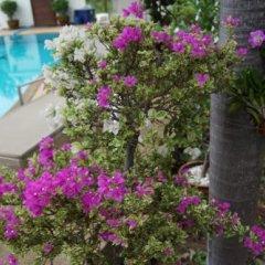 Отель Norway Huay Yai Resort фото 11