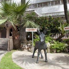 Отель Apartamentos Bajondillo с домашними животными