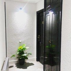 Отель Alojamientos Puerto Príncipe Испания, Сантандер - отзывы, цены и фото номеров - забронировать отель Alojamientos Puerto Príncipe онлайн сауна