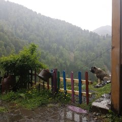 Fora Pansiyon Турция, Чамлыхемшин - отзывы, цены и фото номеров - забронировать отель Fora Pansiyon онлайн фото 22