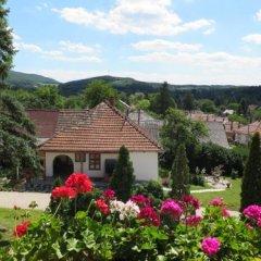 Отель Guest house Magyar Route 66 Венгрия, Силвашварад - отзывы, цены и фото номеров - забронировать отель Guest house Magyar Route 66 онлайн фото 12