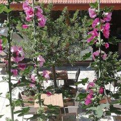 Koray Турция, Памуккале - отзывы, цены и фото номеров - забронировать отель Koray онлайн фото 11