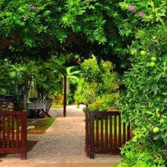 Hotel Villa Monte фото 7
