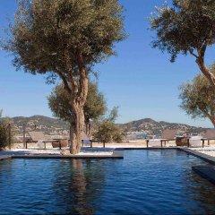 Отель La Torre del Canonigo Hotel Испания, Ивиса - отзывы, цены и фото номеров - забронировать отель La Torre del Canonigo Hotel онлайн бассейн