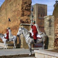 Отель Le Diwan Rabat - MGallery by Sofitel Марокко, Рабат - отзывы, цены и фото номеров - забронировать отель Le Diwan Rabat - MGallery by Sofitel онлайн спортивное сооружение