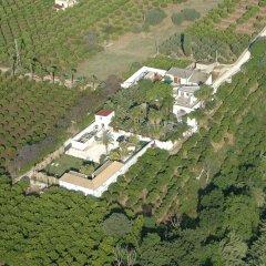 Отель Cuore Di Palme Флорида приотельная территория