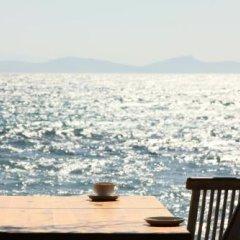 Ergin Pansiyon Турция, Карабурун - отзывы, цены и фото номеров - забронировать отель Ergin Pansiyon онлайн пляж фото 2