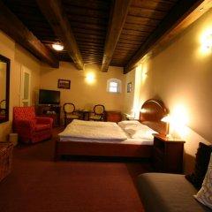 Hotel & Residence U Tri Bubnu сейф в номере