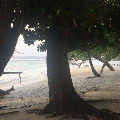 Отель City King Tourist Home Мале пляж фото 2