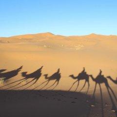 Отель Galaxy Desert Camp Merzouga Марокко, Мерзуга - отзывы, цены и фото номеров - забронировать отель Galaxy Desert Camp Merzouga онлайн фото 2