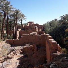 Отель Riad Tagmadart Ferme D'hôte Марокко, Загора - отзывы, цены и фото номеров - забронировать отель Riad Tagmadart Ferme D'hôte онлайн фото 22