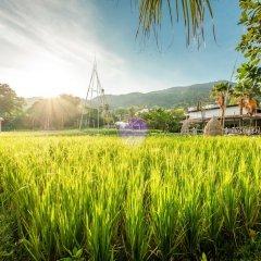 Отель Naina Resort & Spa фото 15