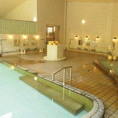 Отель Mine-no-yu Япония, Уторо - отзывы, цены и фото номеров - забронировать отель Mine-no-yu онлайн бассейн фото 3