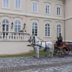 Отель La Contessa Castle Hotel Венгрия, Силвашварад - отзывы, цены и фото номеров - забронировать отель La Contessa Castle Hotel онлайн фото 2