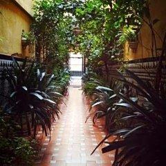 Отель Hostal Atenas фото 15