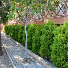 Yavuzhan Hotel Турция, Сиде - 1 отзыв об отеле, цены и фото номеров - забронировать отель Yavuzhan Hotel онлайн фото 6