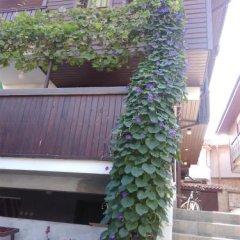 Отель Guest House Aja фото 32