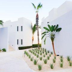 Отель Marquis Los Cabos, Resort & Spa - Adults Only развлечения