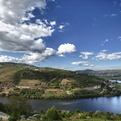Отель Delfim Douro Ламего приотельная территория