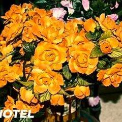 Sur Hotel Sultanahmet фото 2