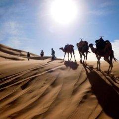 Отель Marmar Марокко, Уарзазат - отзывы, цены и фото номеров - забронировать отель Marmar онлайн фото 6