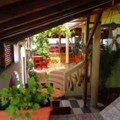 Отель Guest House Rosa гостиничный бар