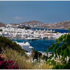 Отель Olia Hotel Греция, Турлос - 1 отзыв об отеле, цены и фото номеров - забронировать отель Olia Hotel онлайн пляж фото 2